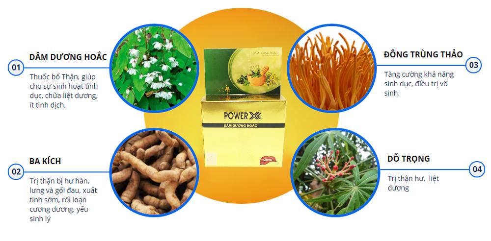 Power X Thực phẩm hỗ trợ sinh lý nam chiết xuất thảo dược (Tuýp 12 viên)